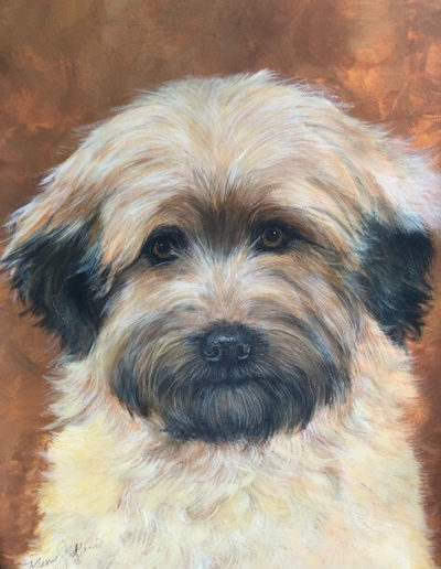 Beige/Brown Terrier - 16 x 20 - Merry Scotland